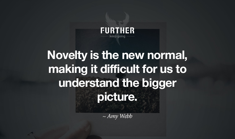 Novelty is the new normal, making it difficult for us to understand the bigger picture. ~ Amy Webb
