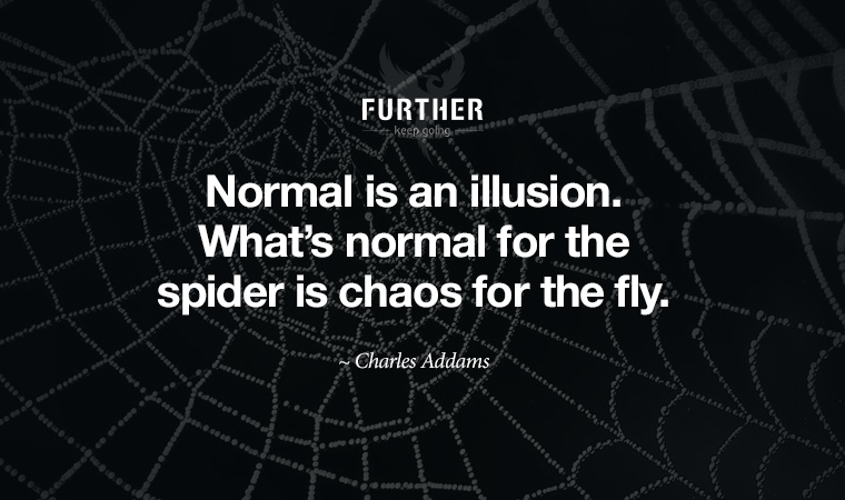 Normal is an illusion. What's normal for the spider is chaos for the fly. ~ Charles Addams